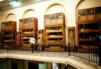 カイロ博物館.jpg
